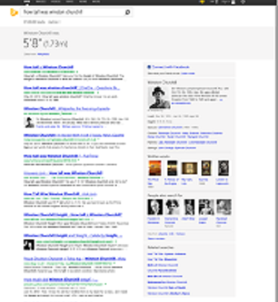 Bing search page.