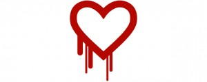 Heartbleed_feature