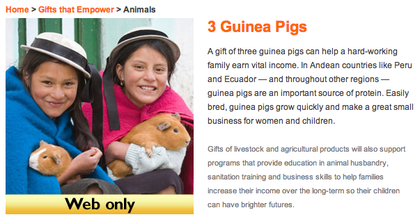 Guinea pigs World Vision