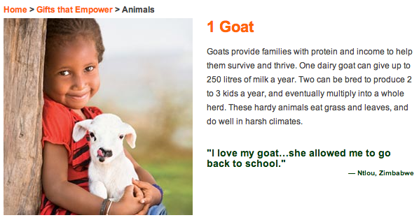World Vision goat