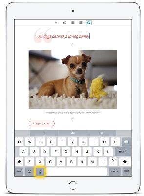 Adobe Slate - Screenshot (2)