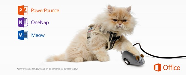 Office2016_cats_feature